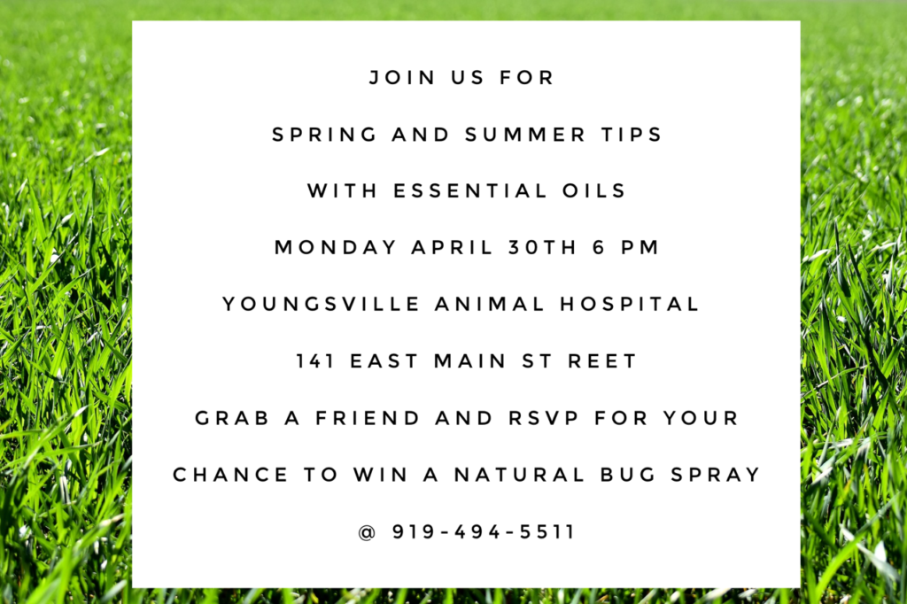 April Essential Oils Class @ YAH @ Youngsville Animal Hospital   Youngsville   North Carolina   United States